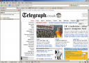 telegraph.co.uk - 21.5% of people will see this - it does not degrade gracefully